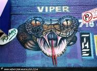 A terrifying viper | Viper | New York Murales