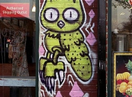 A nightowl next to the window | A nightowl near the window | New York Murales