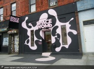 Space Womb | Long Island | 5 Pointz | New York Murales