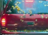 A red car | Car | New York Murales